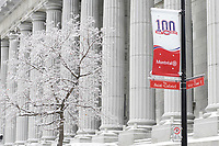 Montreal (Qc) CANADA -2008 file photo - Ice covered trees in Old-Montreal during the winter.