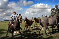 Gauchos riding horses, Argentina.