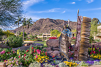 J W Marriott Camelback Resort in Scottsdale Arizona