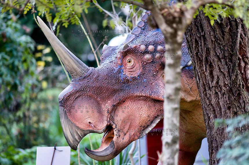 Roma 30 Dicembre 2014<br /> &quot;Dinosauri in Carne e Ossa&quot;, mostra di dinosauri e altri animali preistorici estinti, a grandezza naturale, allestita dall' Associazione paleontologica ambientale, all'Universit&agrave; La Sapienza di Roma. La mostra sara aperta fino al 31 Maggio 2015. La scultura di un Styracosaurus albertensis.<br /> Rome December 30, 2014<br /> &quot;Dinosaurs in Flesh and Bones&quot;, an exhibition of dinosaurs and other prehistoric animals extinct, to life-sized, prepared by Association paleontological environmental, a La Sapienza University of Rome. The exhibition will be open until May 31, 2015. The sculpture of Styracosaurus albertensis.
