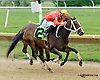 Cherokee Kitten winning at Delaware Park racetrack on 6/26/14