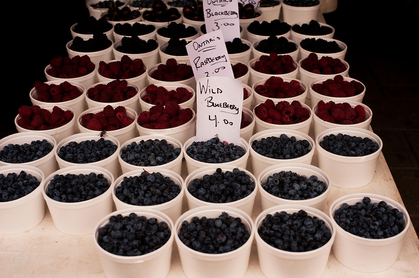 Punnets of blueberries, raspberries, and blackberries at an Ontario farmer's market.
