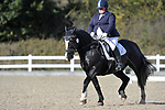 Class 6. British dressage. Brook Farm Training Centre. Essex. UK. 26/10/2018. ~ MANDATORY Credit Garry Bowden/Sportinpictures - NO UNAUTHORISED USE - 07837 394578