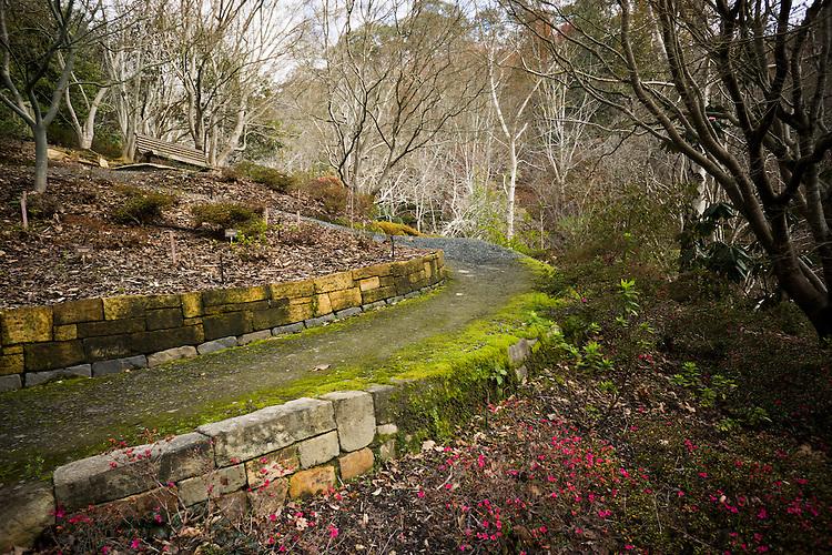 Mt Lofty Botanic Gardens