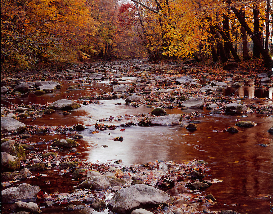 &quot;An Autumn on Rock Creek&quot;<br />