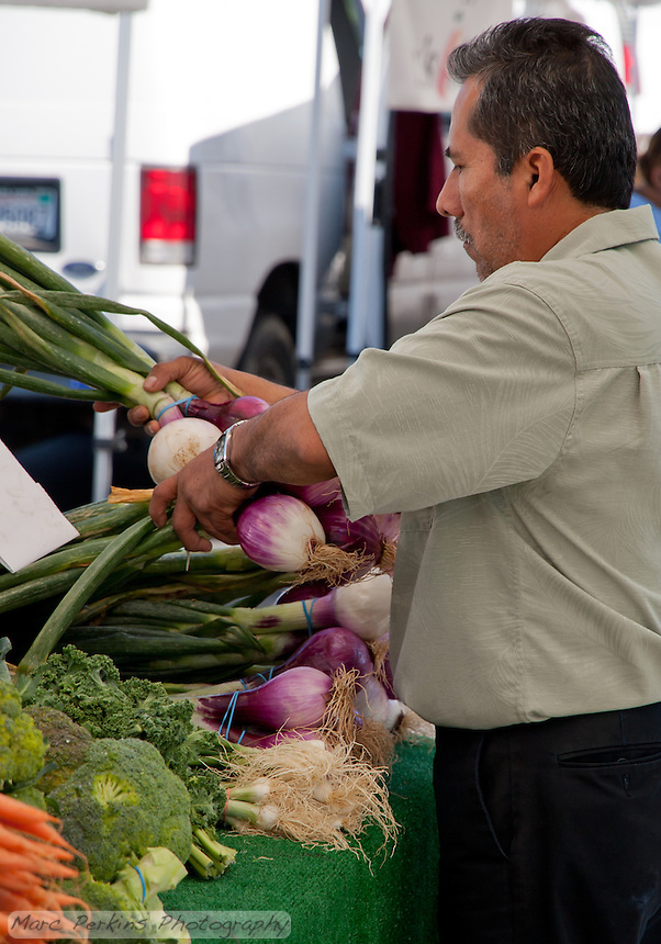 Farmers' market vendor Claudio adjusting his onions with roots and greens.  SR.