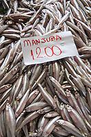 SAO PAULO, SP, 27 DE MARÇO DE 2013. OITAVA SANTA FEIRA DO PEIXE NA CEAGESP. Manjuba a venda na oitava santa feira do peixe que acontece no Patio do Pescado da  Ceagesp.  Esta feira acontece antes das festividades da semana santa e os clientes podem comprar vários tipos de peixes com preço de atacado. A feira acontece ate o dia 28 de março a partir das 14 horas. FOTO ADRIANA SPACA/BRAZIL PHOTO PRESS