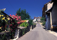 Switzerland, Vaud, Lavaux, Lake Geneva, Alps, Picturesque wine village of Rivaz in the Canton of Vaud.