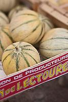 Europe/France/Midi-Pyrénées/32/Gers/Auch: Melons de Lectoure sur un étal du  Marché Place de la Libération