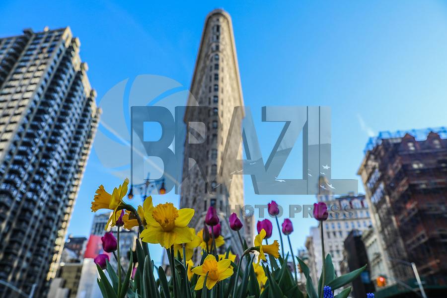 NEW YORK, EUA, 23.04.2018 - CLIMATE-EUA - Flores são vistas com o Flatiron Building ao fundo na ilha de Manhattan na cidade de Nova York nesta segunda-feira, 23. (Foto: William Volcov/Brazil Photo Press)
