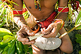 INDONESIA, Mentawai Islands, Kandui Resort, a male healer named Tak Kuanen from the Sakobou tribe, rolling a cigarette