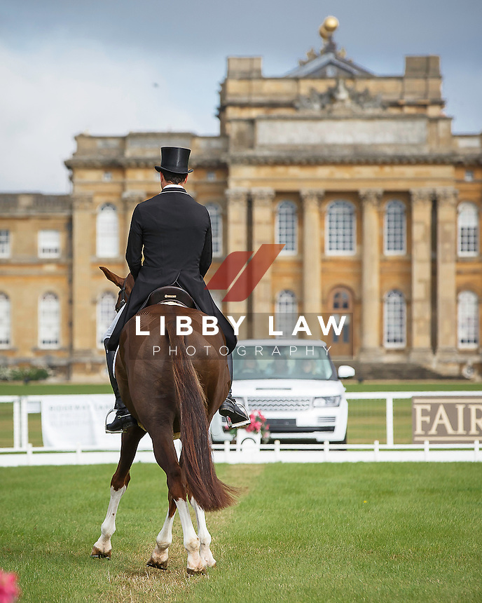 NZL-Tim Price (THE COURT JESTER) INTERIM-9TH: CCI3* SECOND DAY OF DRESSAGE: 2015 GBR-Blenheim Palace International Horse Trial (Friday 18 September) CREDIT: Libby Law COPYRIGHT: LIBBY LAW PHOTOGRAPHY