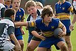 Patumahoe 8th Grade 07