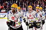 Nuernberg Ice Tigers - Fischtown Pinguins Bremerhaven 31.01.2020