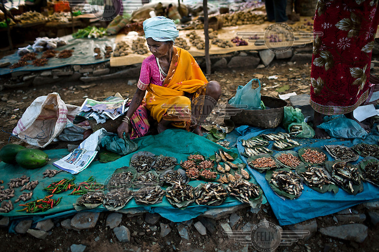 A woman sells dried fish at a village market in Londigura, Chhattisgarh.
