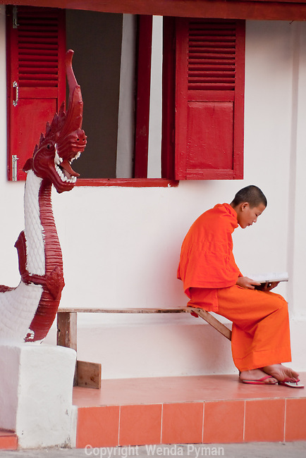 A solitary monk, reading a book, oblivious to his surroundings, sitting on the steps of a monastary with one sandal off, framed by a dragon.