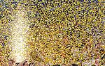 RUKOMET, BEOGRAD, 29. Jan. 2012. - Sampioni Evrope selekcija Danske.  Utakmica finala Evropskog prvenstva u rukometu izmedju Srbije i Danske odigrane u beogradskoj Areni. Foto: Nenad Negovanovic