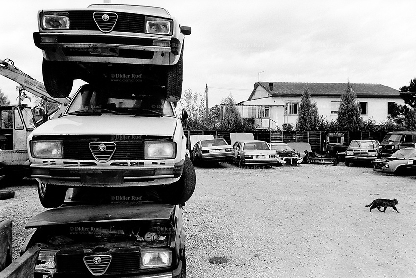 Italy. Veneto Region. Vicenza. Cars scrapyard. A cat walks alone in the middle of derelict motor vehicles. A pile of Alfa Romeo cars. © 1993 Didier Ruef ...