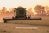 63801-07116 Farmer harvesting soybeans at sunset, Marion Co., IL