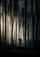 Robin Hood (2018)<br /> Promotional art with Taron Egerton<br /> *Filmstill - Editorial Use Only*<br /> CAP/MFS<br /> Image supplied by Capital Pictures
