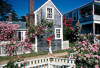 Siasconsett, Nantucket, MA