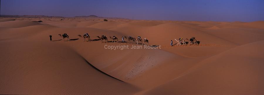 En bordure de l'océan Atlantique, le désert de Mauritanie est encore une terre de nomades. Destination de prédilection de Théodore Monod, l'Adrar de Mauritanie est idéal pour s'initier aux randonnées chamelières et aux méharées. Erg de l'Amatlich. Mauritanie
