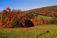 Missouri river hills and pasture, fall colors, Montgomery City, October