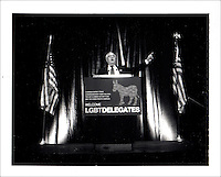 Rep. Barney Frank addresses lesbian, gay, bisexual, and transgender delegates. Polaroid Portraiture and Reportage from the 2008 Political Conventions