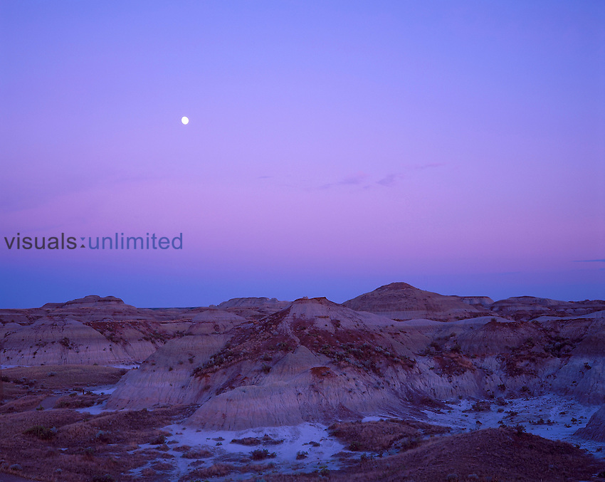 Gibbous Moon rising after sunset over Dinosaur Provincial Park, Alberta. Dark band near horizon is Earth's shadow and pink band above it is Belt of Venus caused by sunlight hitting the upper atmosphere.