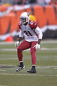 ANTREL ROLLE, of the Arizona Cardinals, in action during their game against the Cincinnati Bengals on November 18, 2007 in Cincinnati, Ohio...Cardinals win 35-27..SportPics