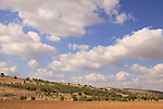 Israel, Shephelah, Scenery by Road 358