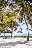 ZANZIBAR, Paje Beach, Chairs under Palm Trees in Baraza Hotel