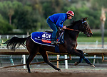 OCT 28: BBreeders' Cup Filly & Mare Turf entrant Castle Lady, trained by Henri Alex Pantall,  at Santa Anita Park in Arcadia, California on Oct 28, 2019. Evers/Eclipse Sportswire/Breeders' Cup