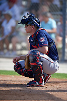 Minnesota Twins catcher Stuart Turner (85) during a Spring Training practice on March 1, 2016 at Hammond Stadium in Fort Myers, Florida.  (Mike Janes/Four Seam Images)