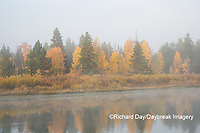 67545-09318 Fall color and fog along the Snake River near Oxbow Bend,  Grand Teton National Park, WY