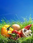 Sweet peppers and cremini mushrooms artistic food still life in green grass under bright blue sunny sky