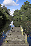 Wooden jetty leading to tree-lined pool of water, Wantisden, Suffolk, England, UK