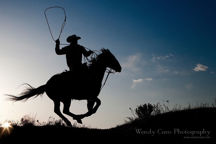 Silhouette of wrangler at sunset, galloping ahead to rope a stray horse