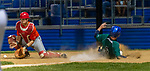 WATERBURY, CT-071520JS31—Simsbury SaberCats' Ryan Caufield (6) comes in to score past Brass City Bombers' Matt Venuto (8) on a two-RBI single by Jeremy Zarwanski (14) during their summer college league game Wednesday at Municipal Stadium in Waterbury. <br /> Jim Shannon Republican-American
