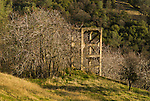 Concrete headframe ruins of the Bunker Hill gold mine, Amador County, California. Oak-covered hills and bare Ailanthus trees