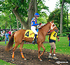 La Murette before The Small Wonder Stakes at Delaware Park on 9/12/15