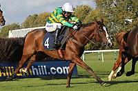 Race winner Another Trump ridden by A P McCoy (4) jumps the last during the Simplythebestevents.co.uk Handicap Chase