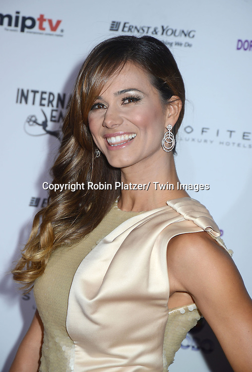 Claudia Vieira attends the 40th Annual International Emmy Awards .on November 19, 2012 at The Hilton New York in New York City.