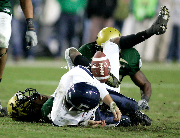 TAMPA, FL- 23 November 2008--112308BF13--UConn quarterback Tyler Lorenzen, 4, fumbles after being hit by South Florida's Jerome Murphy,3, during the fourth quarter Sunday night at Raymond James Stadium in Tampa, FL.  Bob Falcetti Republican-American