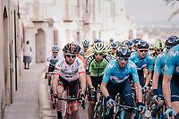 Alejandro Valverde (ESP/Movistar) in the bunch<br /> <br /> 27th Challenge Ciclista Mallorca 2018<br /> Trofeo Campos-Porreres-Felanitx-Ses Salines: 176km