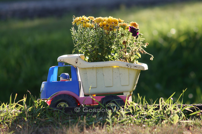 Toy Truck Planter with Flowers