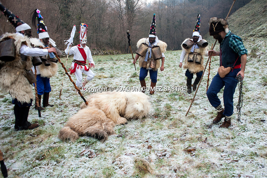 During their tour the zarramacos beat and throw to the ground to the bear before killing durnte La Vijanera that is considered the first winter carnival of Spain