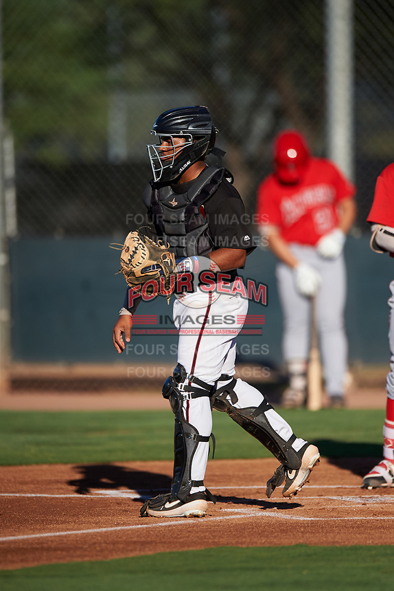 AZL D-backs catcher Oscar Santos (8) during an Arizona League game against the AZL Angels on July 20, 2019 at Salt River Fields at Talking Stick in Scottsdale, Arizona. The AZL Angels defeated the AZL D-backs 11-4. (Zachary Lucy/Four Seam Images)