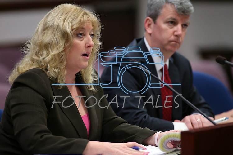 Deputy State Budget Director Stephanie Day and Gov. Brian Sandoval's Chief of Staff Gerald Gardner testify in committee at the Legislative Building in Carson City, Nev. on Tuesday, Feb. 5, 2013. .Photo by Cathleen Allison