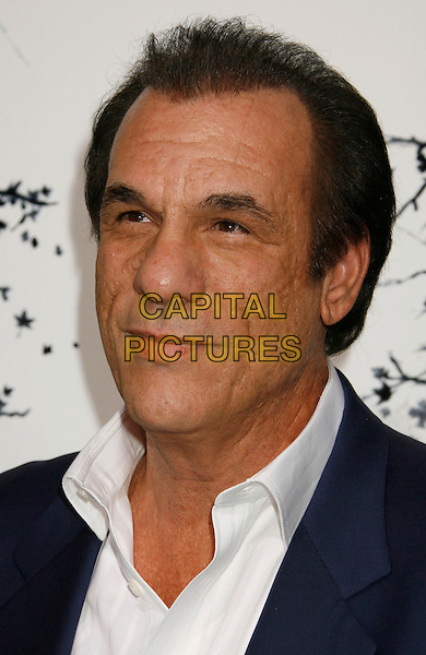 "ROBERT DAVI.""Premonition"" World Premiere held at the ArcLight Cinerama Dome Theatre, Hollywood, California, USA..March 12th, 2007.headshot portrait .CAP/ADM/RE.©Russ Elliot/AdMedia/Capital Pictures"